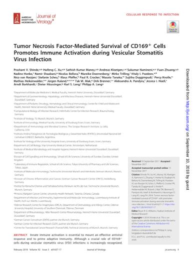 Tumor Necrosis Factor-Mediated Survival of CD169 Cells