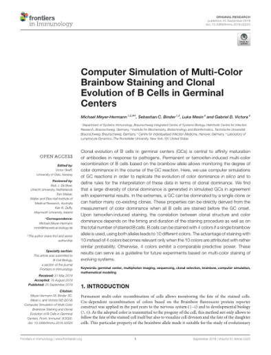 Computer Simulation of Multi-Color Brainbow Staining and
